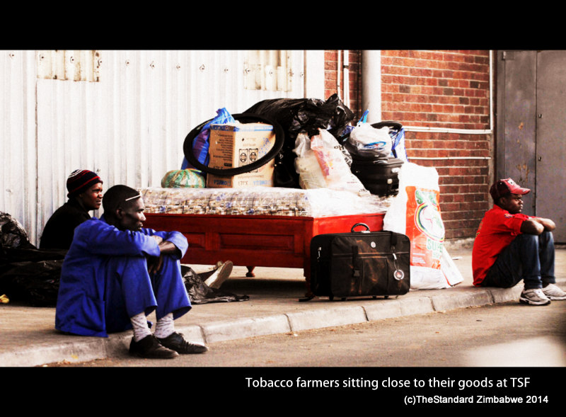 1-some of the Tobbacco farmers seen sitting with their goods outside the Tobacco Sales Floor(TSF)  on Friday pic Shepherd Tozvireva-001